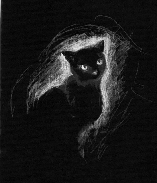 black cat by H Johanna 550x643 Stuning Black And White Photo Manipulations