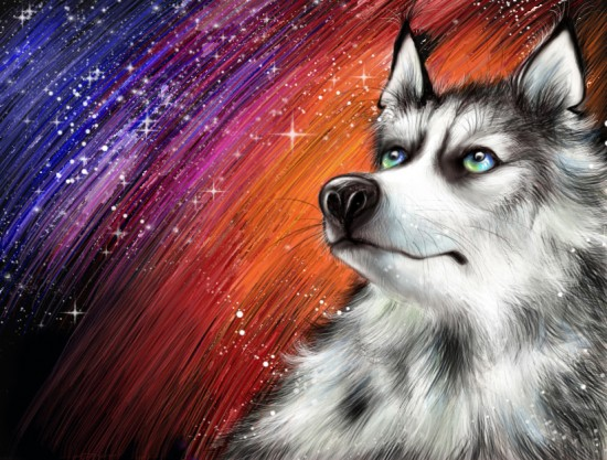 the wolf by arivle 550x417 42 Well Painted Wolfs