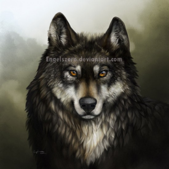 wolf by engelszorn d1hyr2d 550x550 42 Well Painted Wolfs