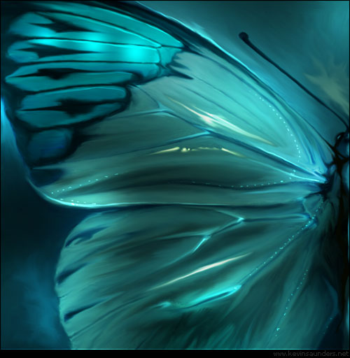 Butterfly_005_by_inventivedreams