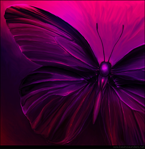 Butterfly_08_by_inventivedreams