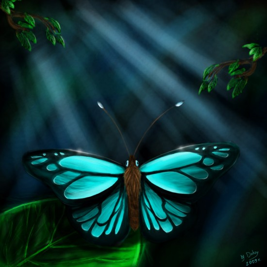 Butterfly_by_Dzhay