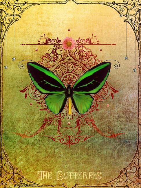 The_Butterfly_by_IIMadhoshiII