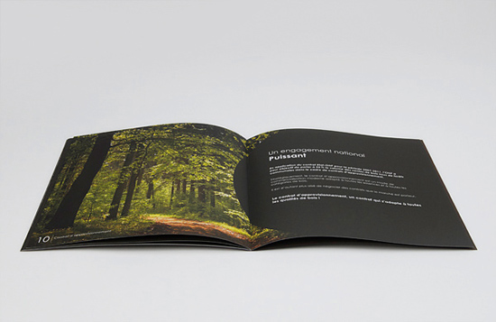 Designing a Brochure – Important Guidelines