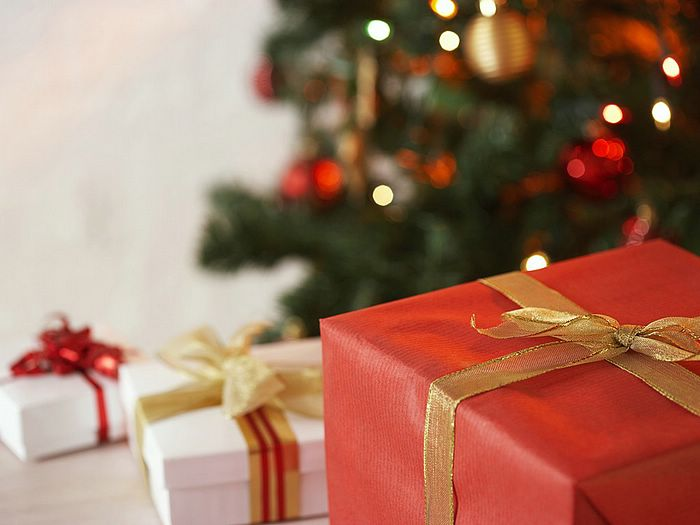 Perfect Christmas Gift?